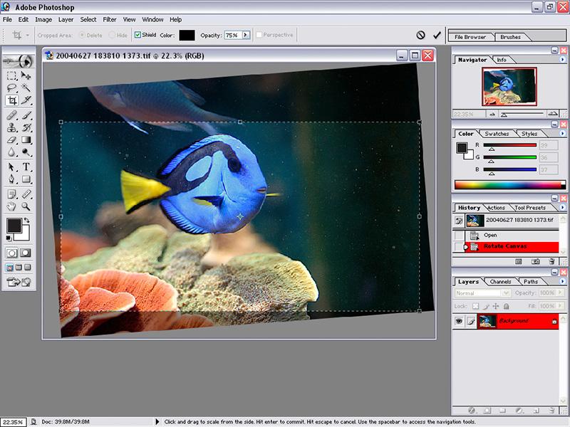 Ximina's Photography [Lesson 7 - Adobe Photoshop]
